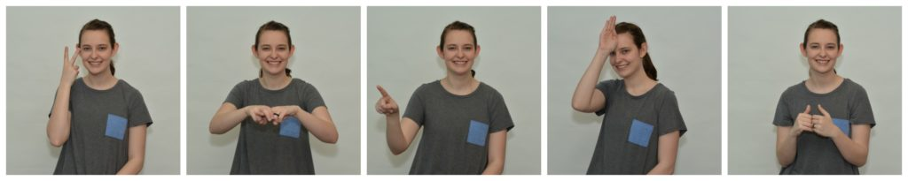 Functional Sign Language for Music Therapists Collage